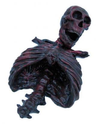 Burned Bloody Skeleton