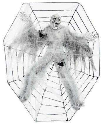 Cobwebs skeleton