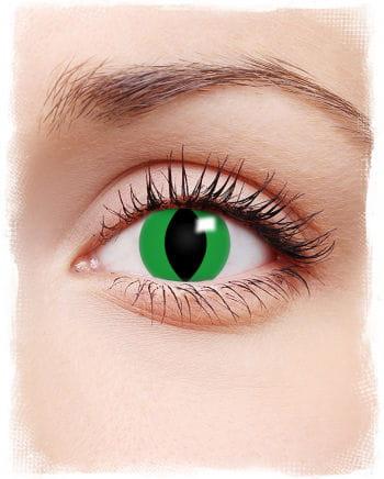 Kontaktlinsen grüne Anakonda Motiv