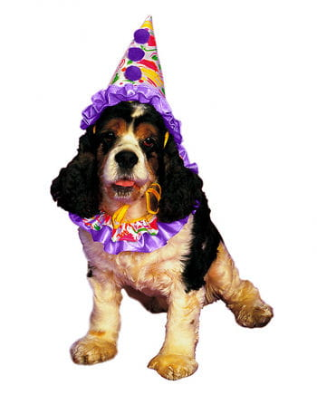 Clown Dog Costume