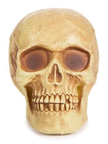Shiny Skull