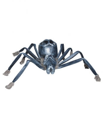 Scary spider with skull back
