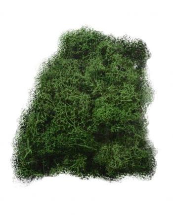 Halloween Decoration Moss 50 g