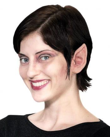 Kleine Vampir Ohren
