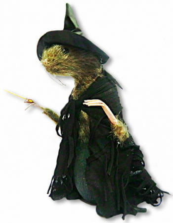 Rat In Witch Costume Great