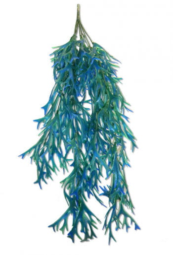 Seaweed Decoration