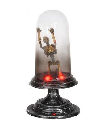 """Skeleton under """"bell jar"""""""