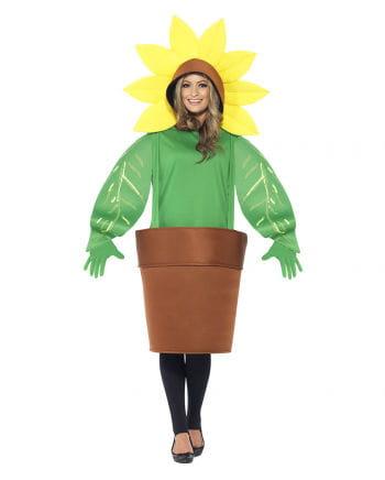 Sunflower in pot costume