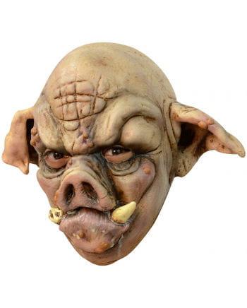 Tollwütiges Schwein