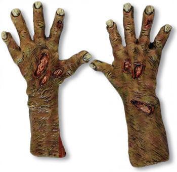 Undead Zombie Hands