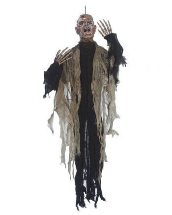 Rotting Zombie Hanging Prop