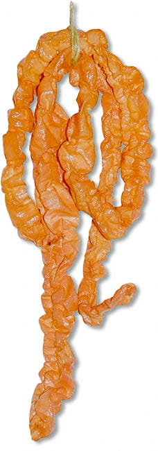 Dried-Out Fake Intestines