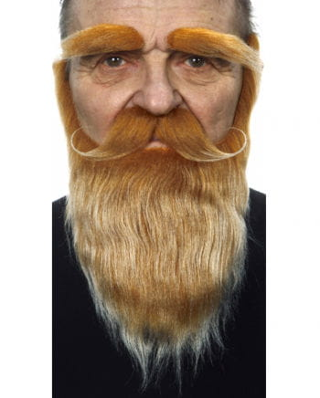 Beard with mustache and eyebrows mottled red-blond