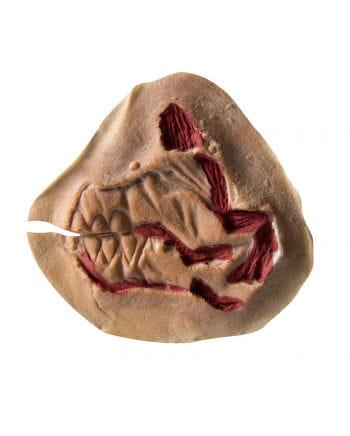 Zombie bite wound