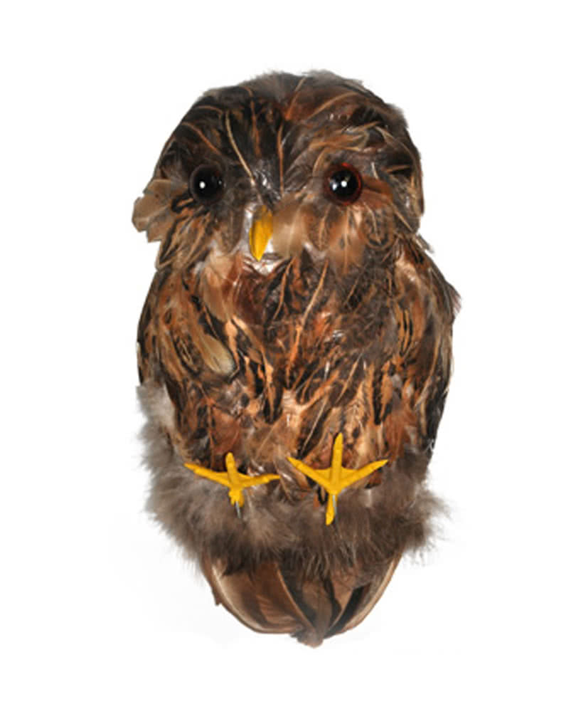 deco brown owl for your halloween decoration | horror-shop