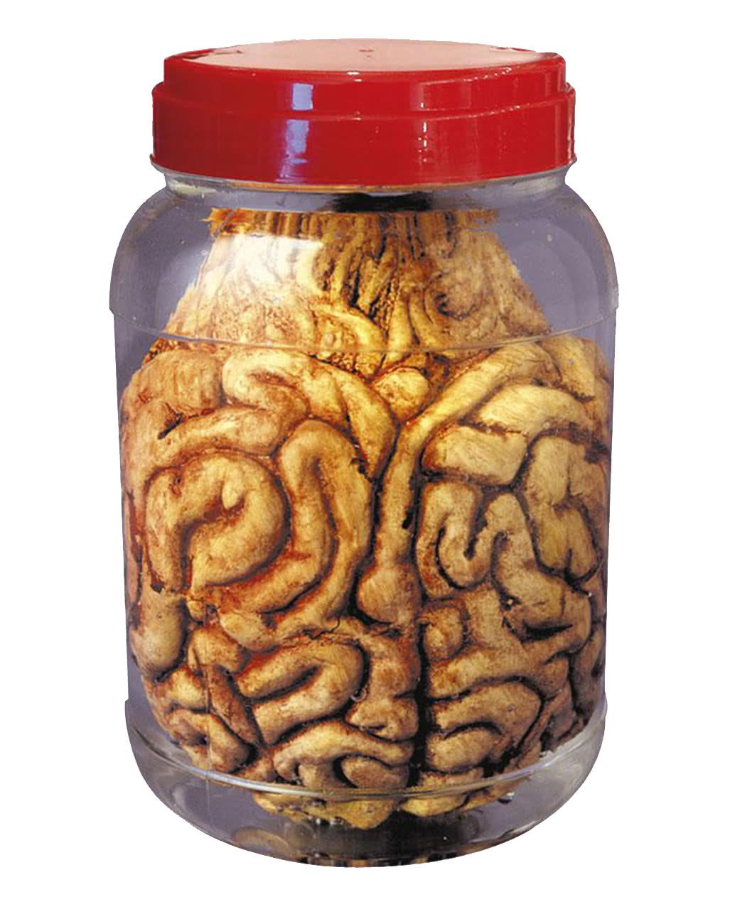 Einmachglas Mit Gehirn Halloween Deko Horror Shop Com