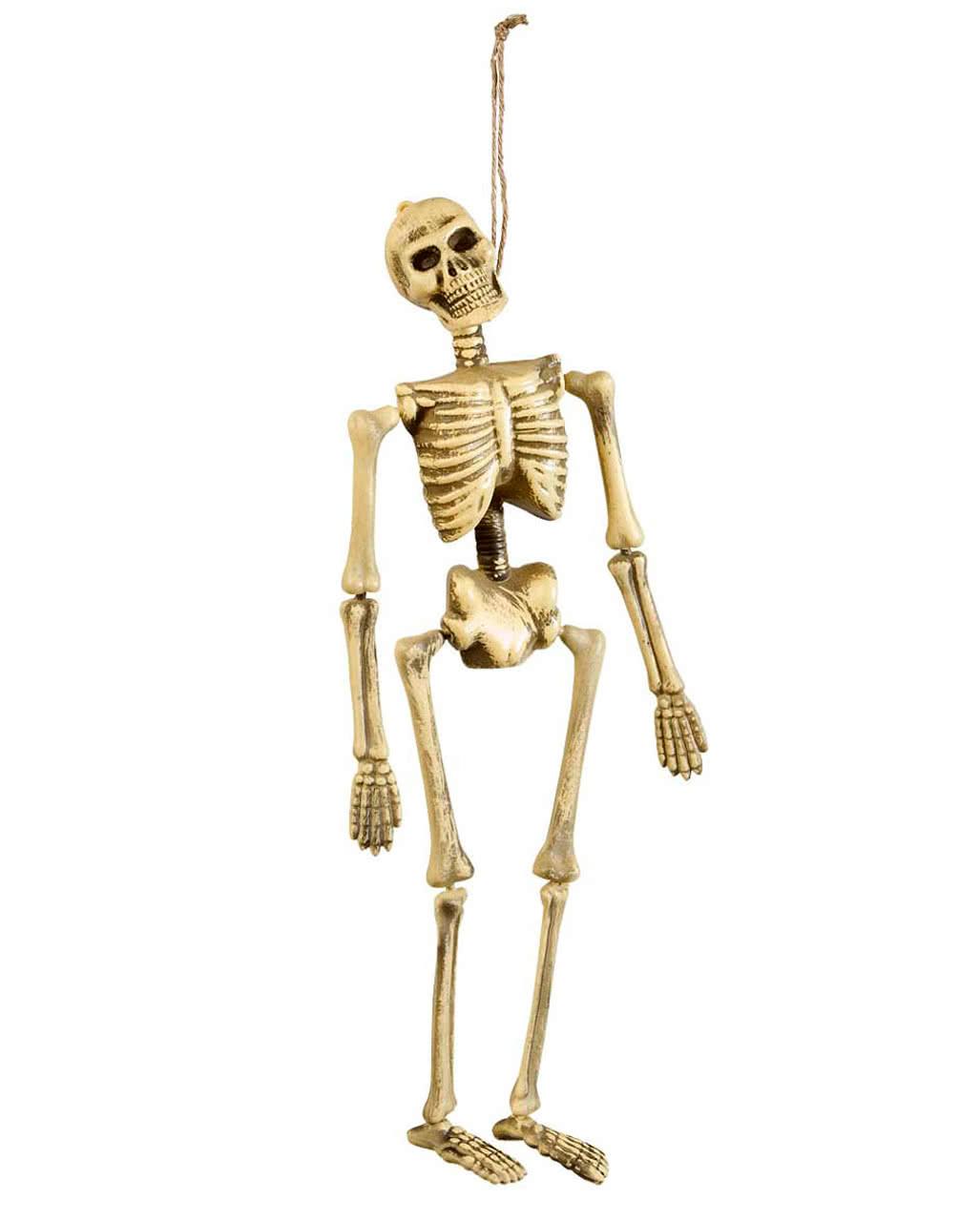 Halloween Deko Skelett 40cm als Grusel Deko | Horror-Shop.com