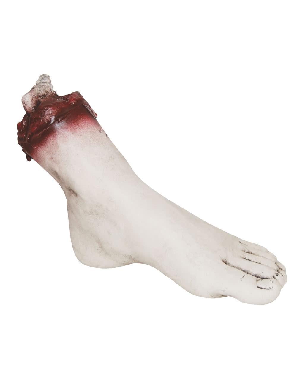 Ungewöhnlich Oberflächenanatomie Fuß Zeitgenössisch - Anatomie Ideen ...