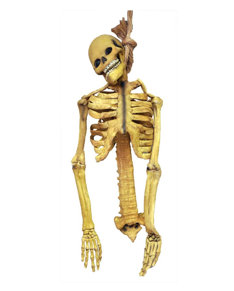 Skelett Latex Torso Halloween Skelett Deko aus Latex | Horror-Shop.com