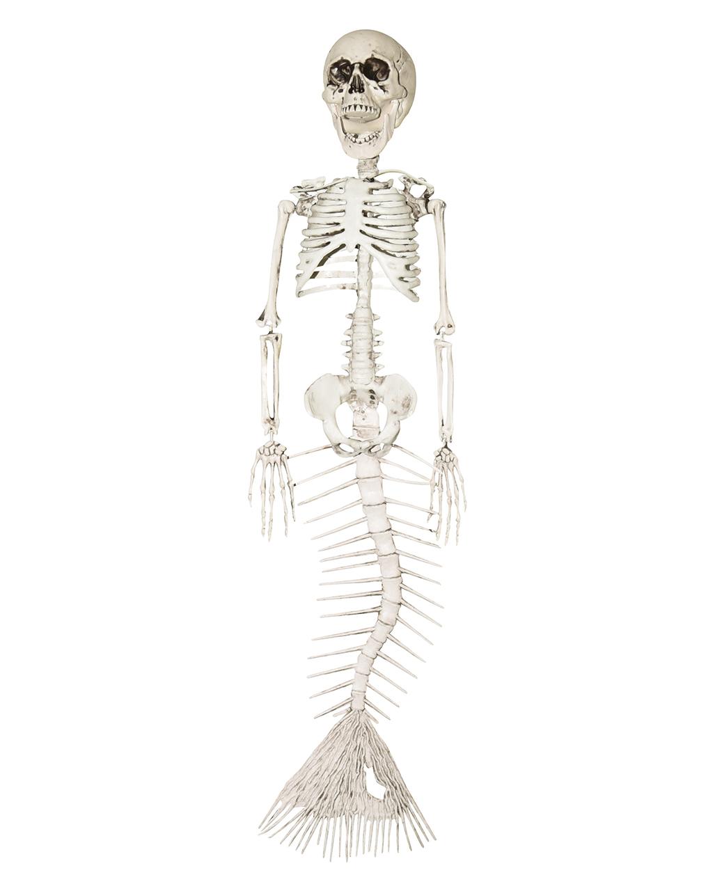 Skelettierte Meerjungfrau 45cm Halloween Deko Horror Shop Com