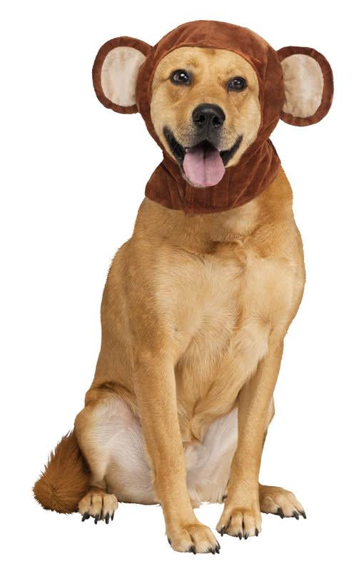 Monkey ears for dogs | Animal Dog Costume for the four-legged friends | horror-shop.com  sc 1 st  Horror-Shop.com & Monkey ears for dogs | Animal Dog Costume for the four-legged ...