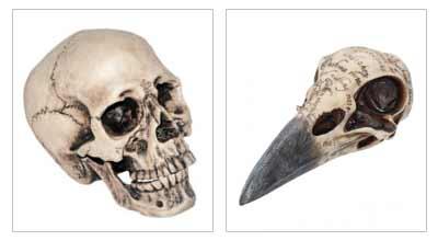 Halloween Totenschädel