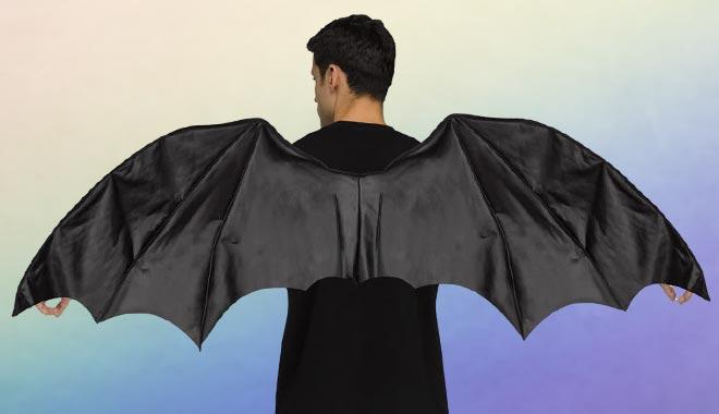 Kostümflügel
