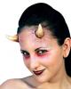 Horns application