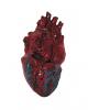 Deluxe Kunststoff Herz
