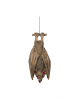 Hanging Bat 36cm Latex