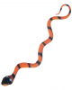 Kobra Schlange orange-schwarz