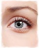 Spiderweb Contact Lenses