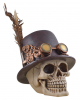 Steampunk Skull With Cylinder