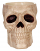 Skull Candy Bowl