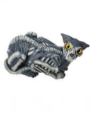 Creepy Zombie Katze