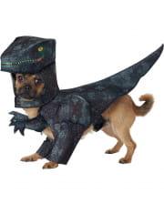 Halloween Hundekostume Tierkostume Fur Haustiere Horror Shop Com