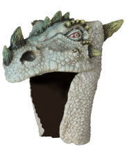 Drachen Helm albino