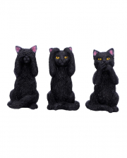 Three Wise Black Cats