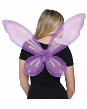 Ivory Wing Violet