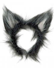 Wolf's Plush Ears
