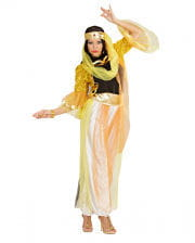 Harem Dancer Costume XL