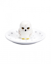 Harry Potter Hedwig Jewellery & Accessories Bowl