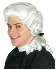 Men Rococo Wig