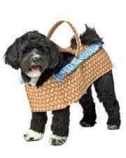 Turnschuhe vielfältig Stile erstaunlicher Preis Halloween Hundekostüme Tierkostüme für Haustiere! | Horror ...