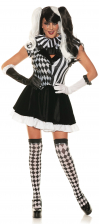 Jester Ladies Costume