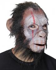Julius War Ape Vollkopfmaske