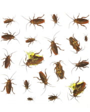 Cockroaches Stickers 20 Pieces