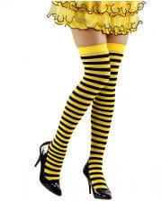 Knee Socks Bee