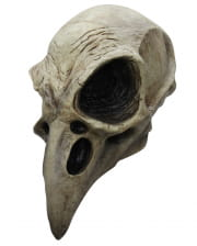 Crows Skull Mask