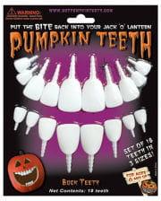 Squash teeth